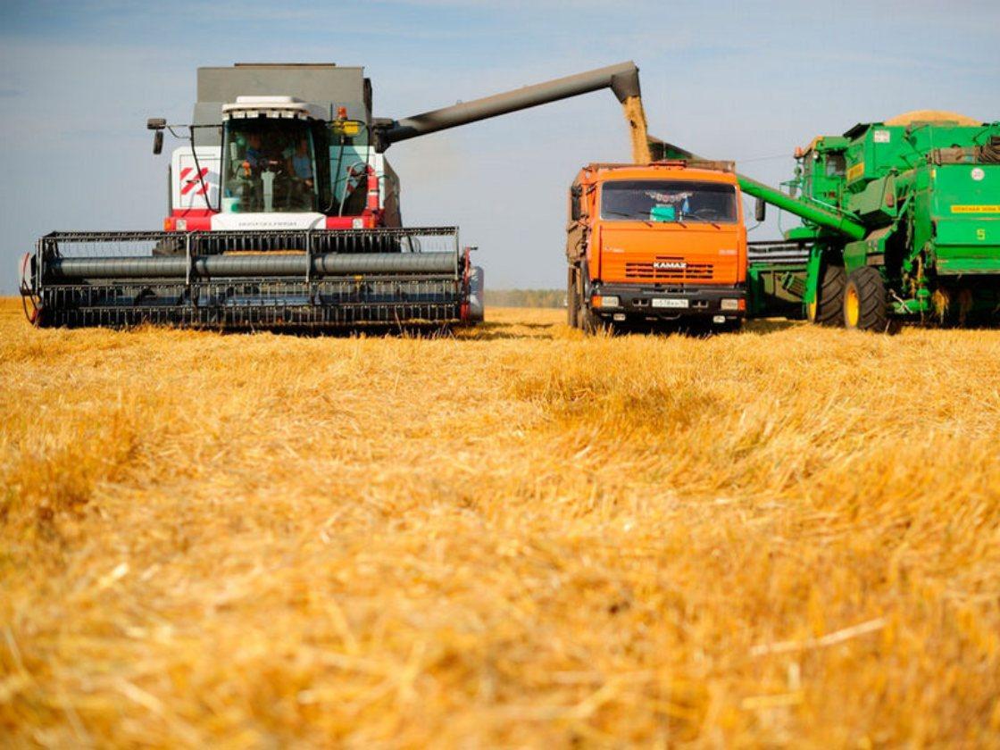 Каталог фермерских хозяйств и сельскохозяйственных предприятий Алтайского края