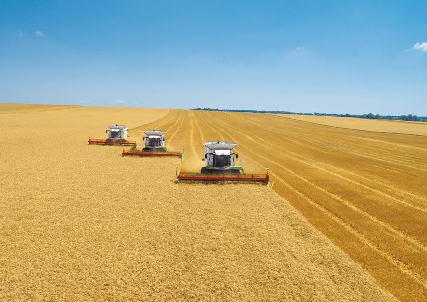 Цена на Зерно – Ноябрь 2020г.