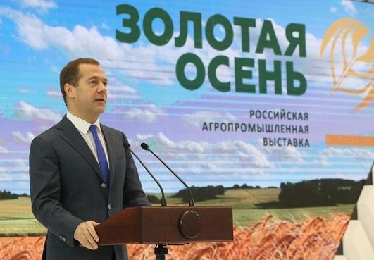 В 2017 году Россия поставит рекорд по урожаю зерна за последние 100 лет