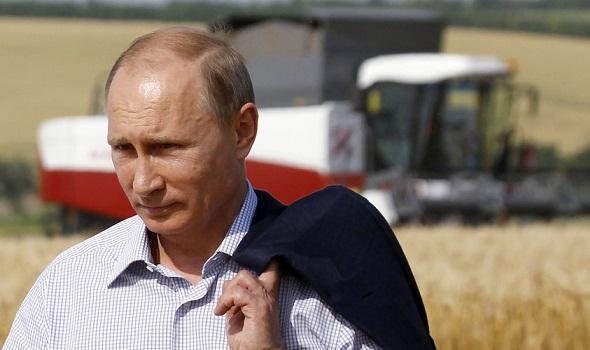 Поздравление Владимира Путина с днем работника сельского хозяйства и перерабатывающей промышленности