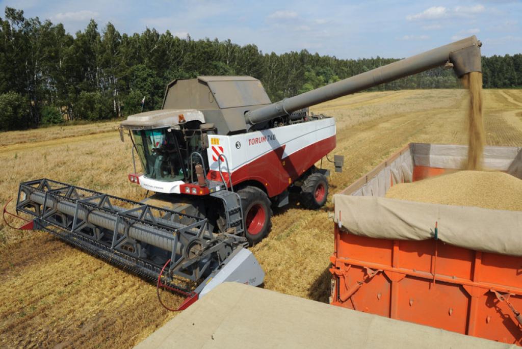 Минсельхоз: Урожай зерна в 2018 году снизится на 15%, сахарной свеклы - на 24%