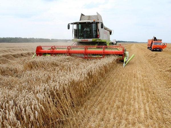 Индекс развития сельхозпроизводителей 2018