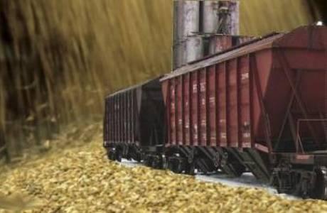Алтайскому краю помогут вывезти зерно