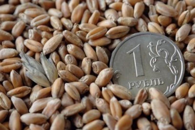 Мониторинг цен на зерно в Алтайском крае с 18 по 25 мая 2018 г.