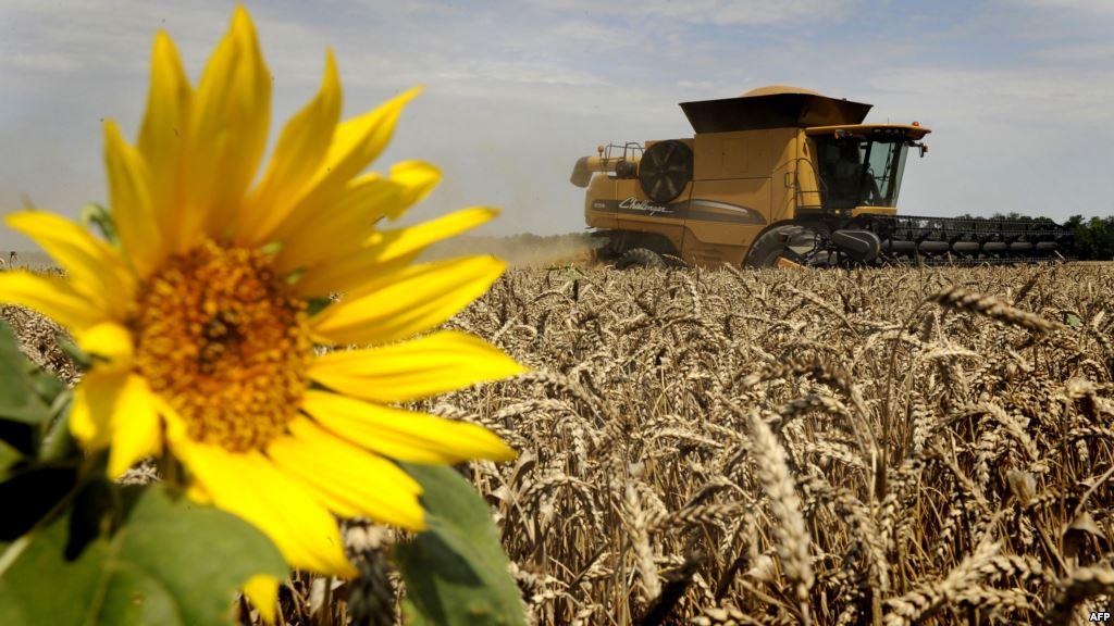Региональный гектар. Землю фермерам раздадут бесплатно?