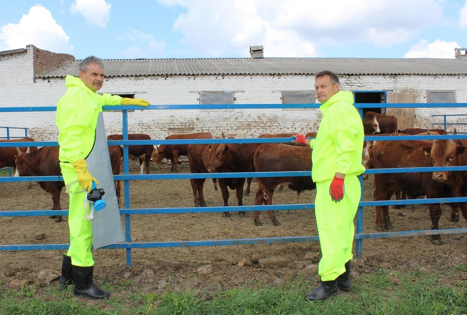 Почти 3,5 млн акарицидных обработок животных провели ветеринарные врачи с начала года