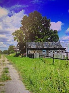 О  прекрасной жизни в сельской местности уже  в недалеком будущем