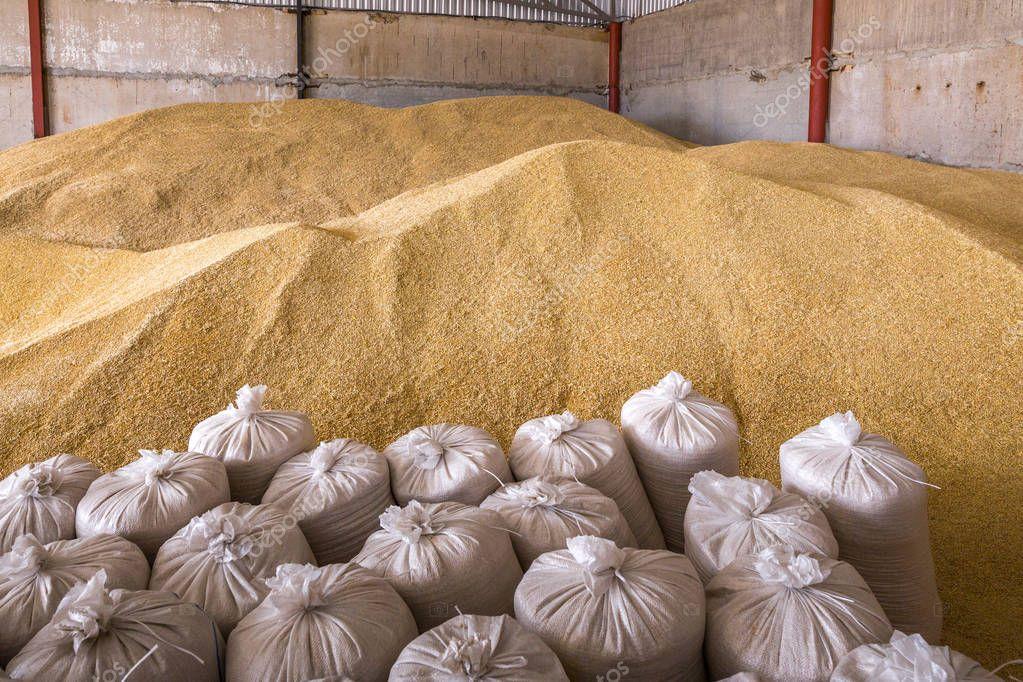 Прогноз цены на зерно,  весна 2020г.