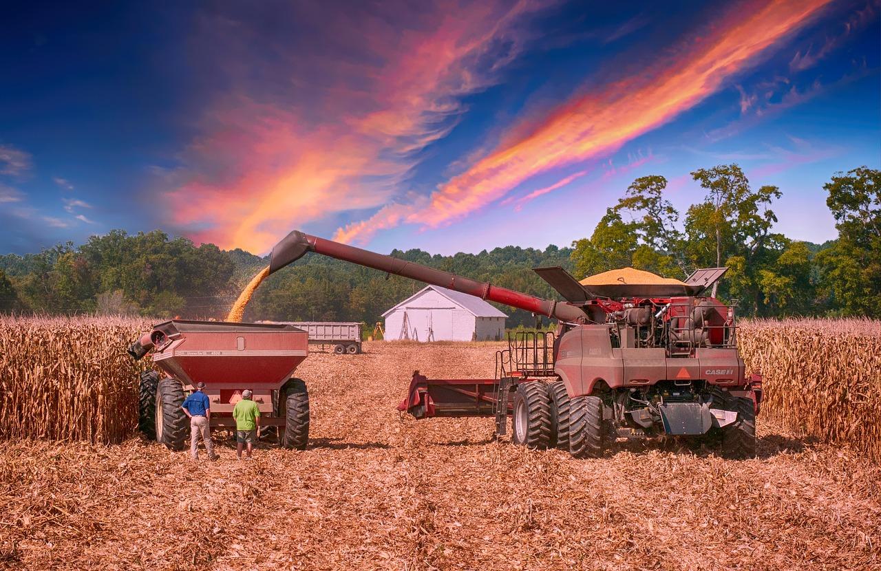 Сельское хозяйство и COVID-19