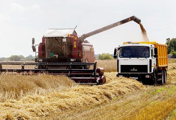 Цена на зерно – август 2020г.