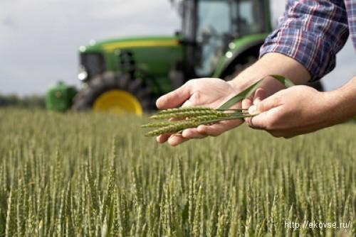 Как будет сокращенно сельскохозяйственные производители