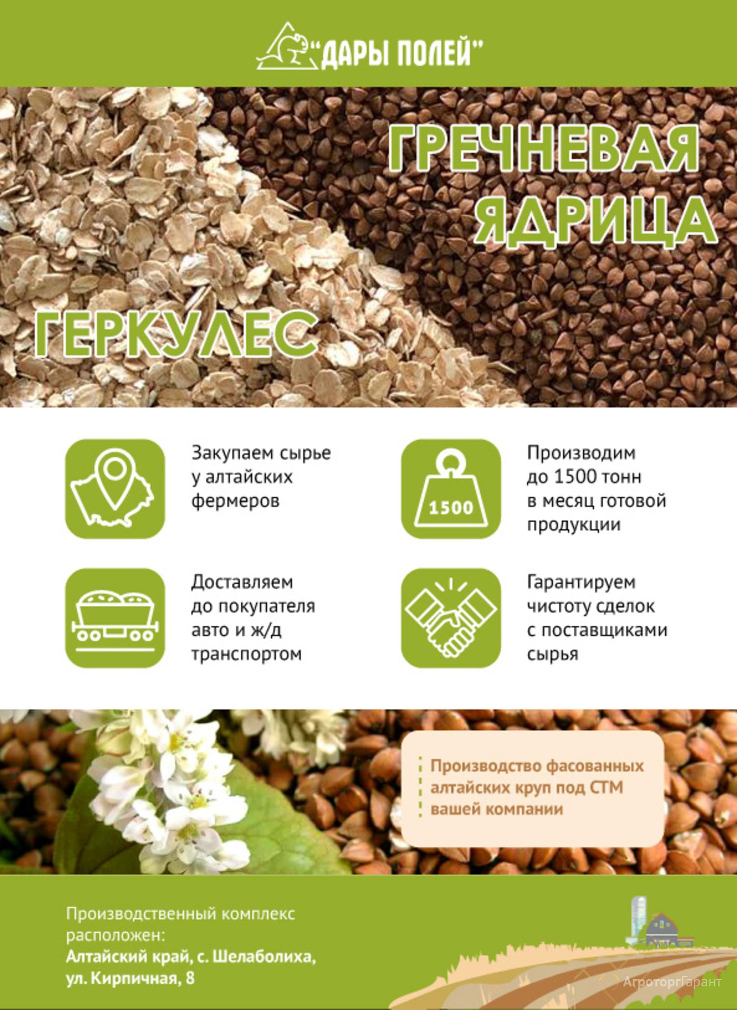 Объявление Крупа гречневая в/с в Алтайском крае