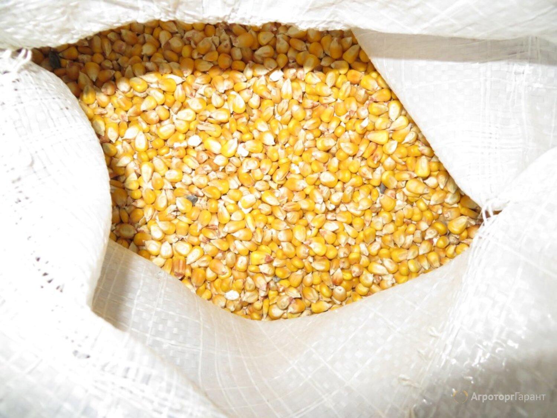 Объявление Кукуруза кормовая в Москве и Московской области