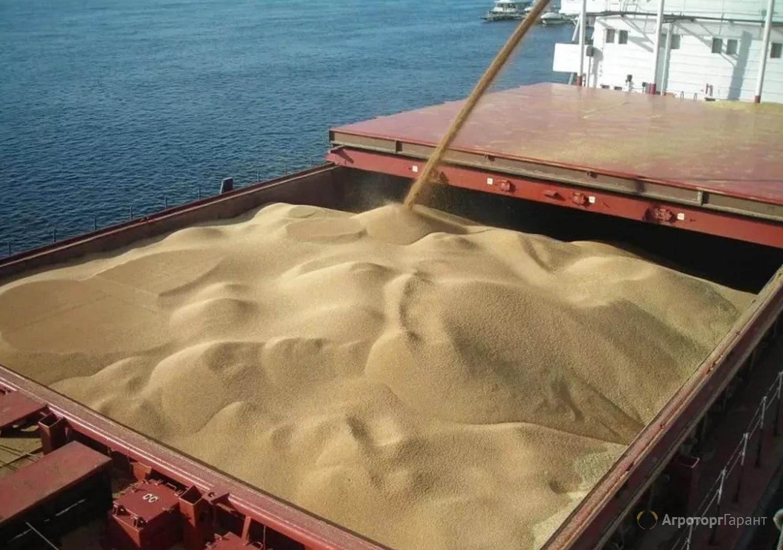 Объявление Пшеница экспорт в Краснодарском крае