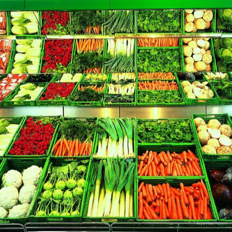 Объявление Овощи. Купим крупным оптом в Ростовской области