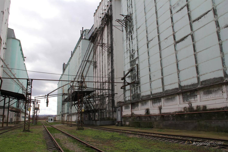 Холмский элеватор краснодарский край опасности при работе на конвейере