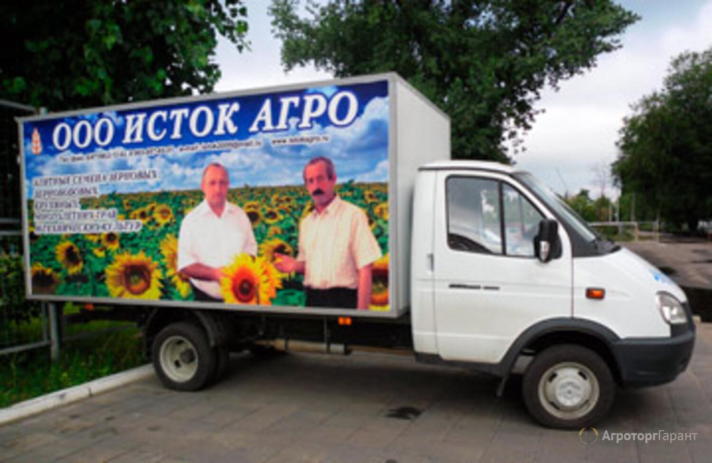 Семена кукурузы Краснодарский 385МВ