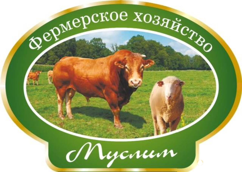 Объявление КРС живым весом на убой в Санкт-Петербурге и области