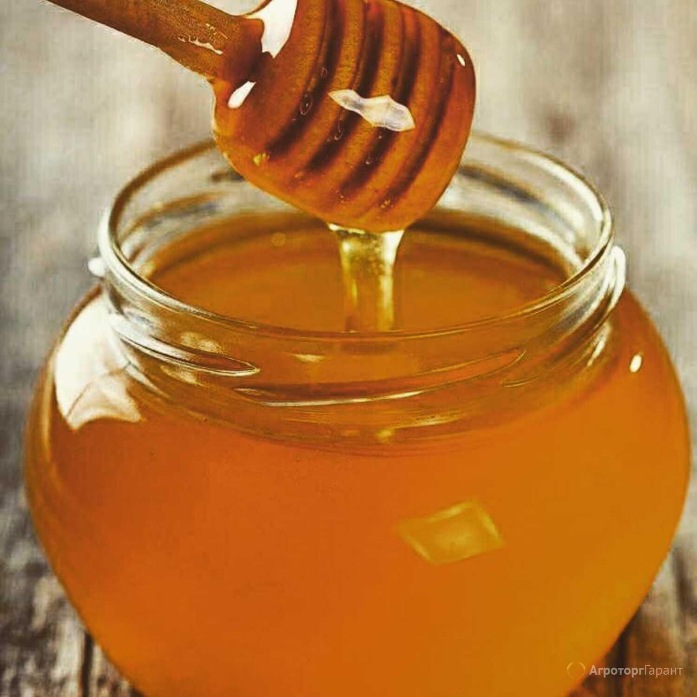 Объявление Продаю цветочный мед в Республике Татарстан