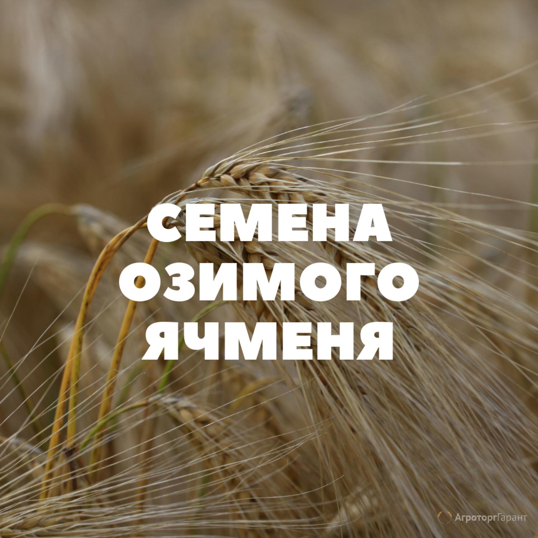Объявление Семена озимого ячменя на посев в Краснодарском крае