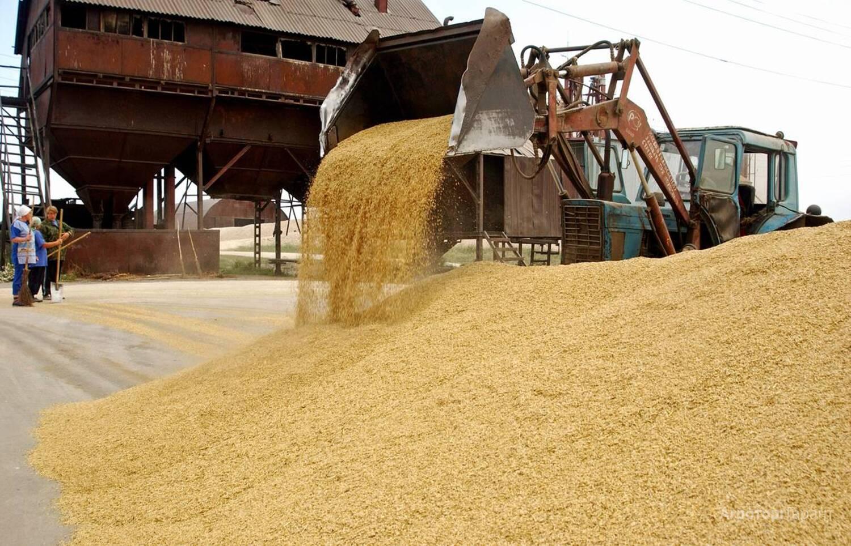 Объявление Куплю пшеницу в Волгоградской области