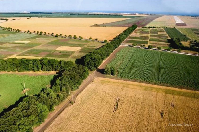 Объявление Продам землю сельхозназначения в Ростовской области