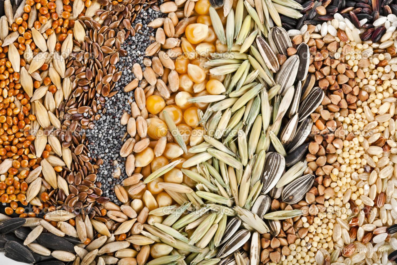 Объявление Купим везде и много льна, семечки, вики, просо,горчицы в Ульяновской области