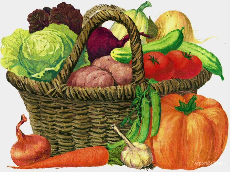 Объявление Плодовоовощная консервация! ОПТ!!! в Приморском крае