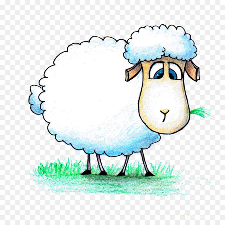 Объявление Ярки. Овцы курдючные в Саратовской области