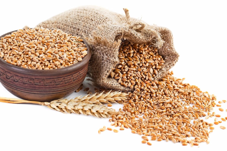 Объявление Пшеница 3 класс в Алтайском крае