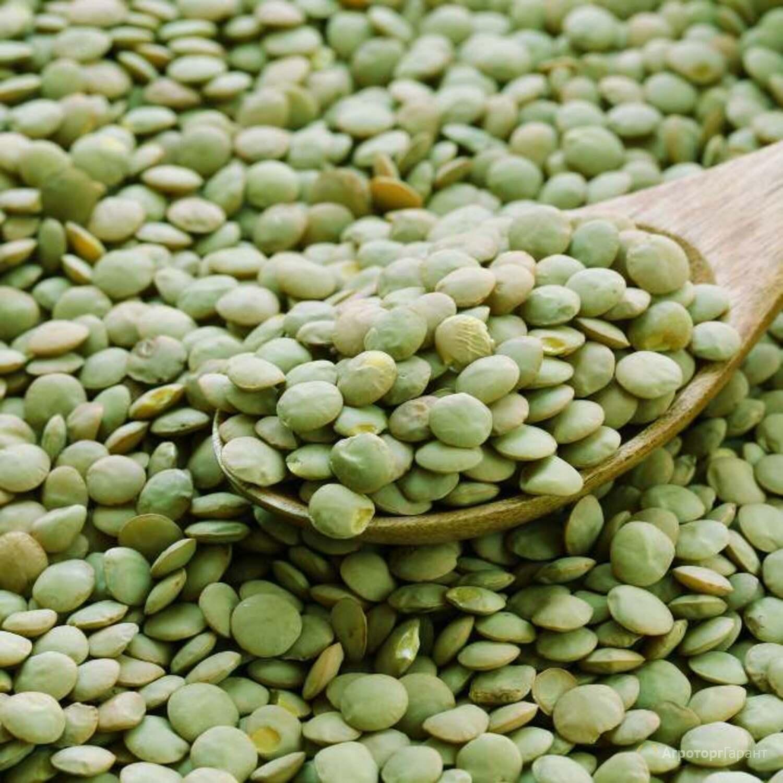 Объявление чечевица зеленая в Саратовской области