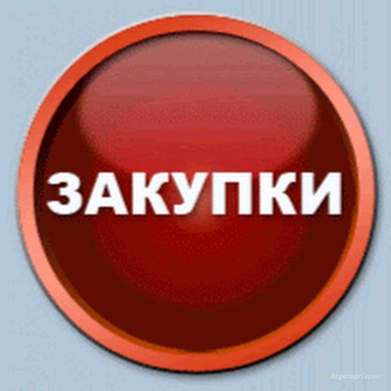 Объявление Закупаем пшеницу, ячмень, кукурузу, лён, сою в Белгородской области