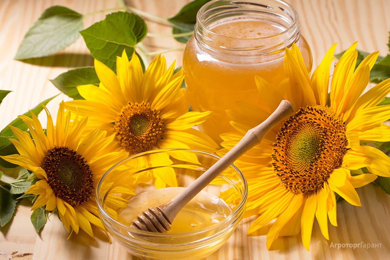 Объявление Мёд в Белгородской области