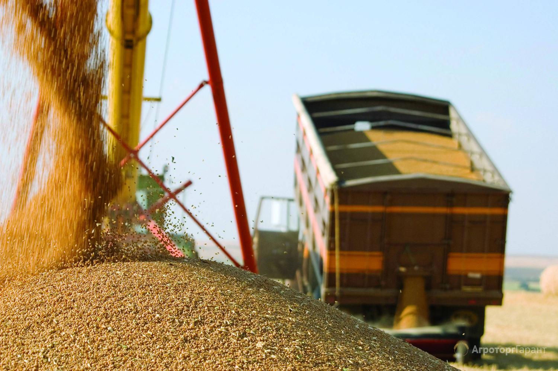 Объявление Перевозка зерна урожая 2021 в Пензенской области. Очень выгодные условия. в Пензенской области