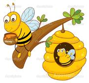 Объявление Продам мед гречишный, разнотравье в Алтайском крае