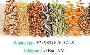Объявление Дорого! Купим кукурузу в Ростовской области