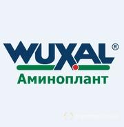 Объявление Вуксал (Wuxal) Аминоплант в Ставропольском крае