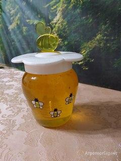 Объявление Свежайший подсолнечный мед со своей пасеки в Самарской области