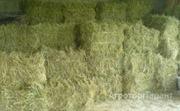 Объявление Продажа: силос, сенаж, сено, солома в Москве и Московской области