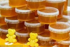Объявление Продам мёд в Кемеровской области