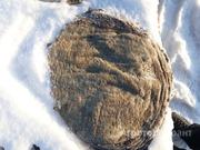 Объявление Книжка говяжья в Свердловской области