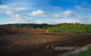 Объявление Продаются земли с/х назначения 511 Га в Вадинском районе в Пензенской области