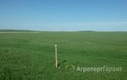 Объявление Участок земли сельхозназначения 400 га в Алтайском крае