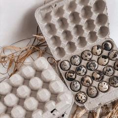 Объявление Яйца перепелиные в Республике Башкортостан