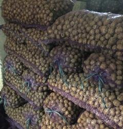 Объявление Семенной картофель элита, РС-1, РС-2 в Пензенской области