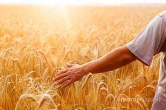 Объявление Услуги агронома в Алтайском крае