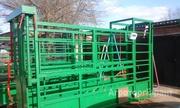 Объявление Раскол для фиксации КРС, взвешивания, ветеринарной обработки  быков, коров, телят. в Ставропольском крае