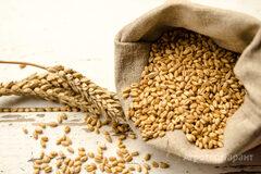 Объявление Услуги перевалки зерновых, масленичных и зернобобовых в Алтайском крае