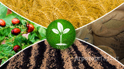 Объявление Средства защиты растений, удобрения в Республике Башкортостан
