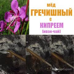 Объявление Мёд Гречишный с Кипреем (Иван чай) 2020г. в Краснодарском крае